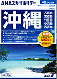 ANA沖縄